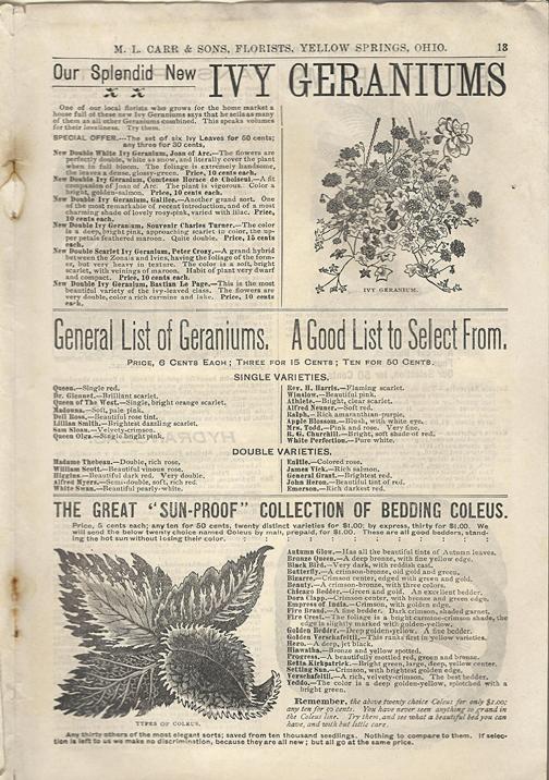 1898-Carr-Nursery-Catalog-pg13
