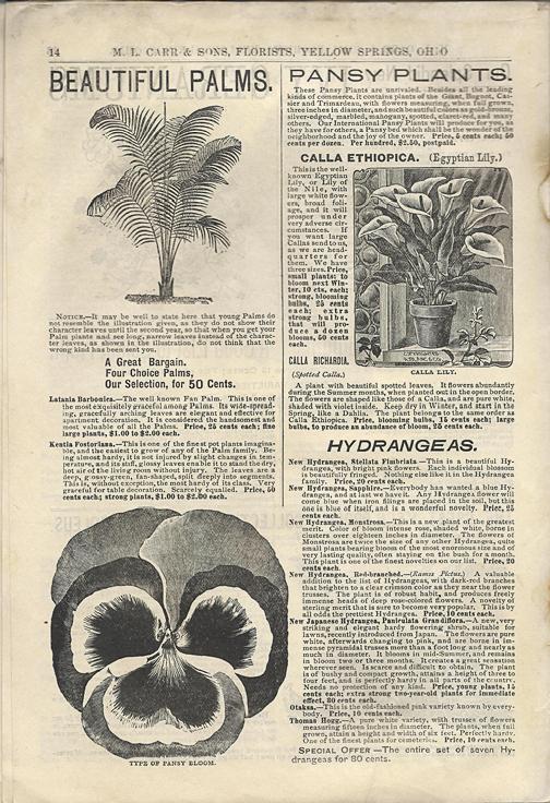 1898 Carr Nursery Catalog page 14